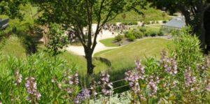 Les jardins suspendus au Havre