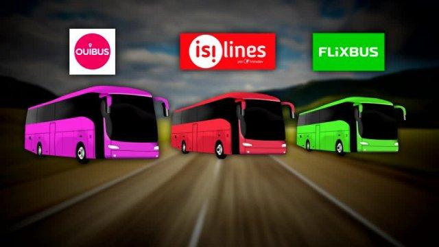 Marché de l'autocar - transporteurs nationaux/internationaux