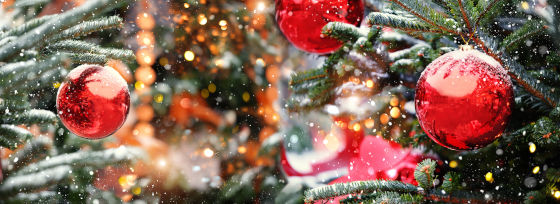 Places to visit during Christmas holiday